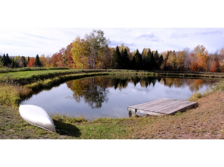 Large pond with shaded picnic area, campfire pit, canoe, and deck.