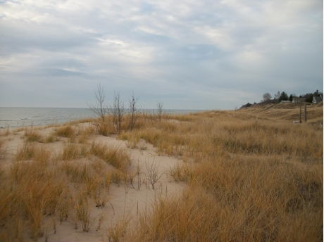 Spectacular low rolling dunes lead to a sugar sand beach. (Fall view)