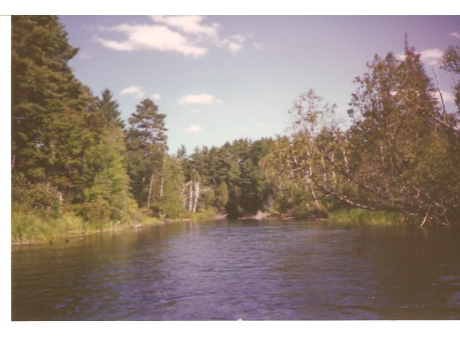 South Branch Au Sable River