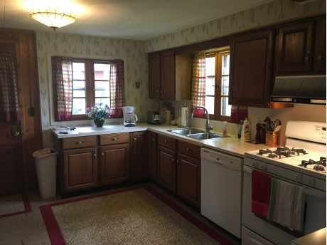 Kitchen view including dish washer/microwave,