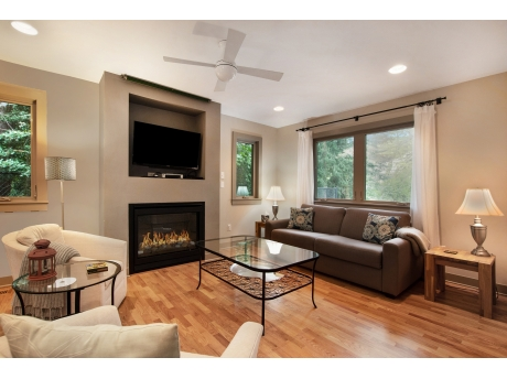 Wonderful Living Room with Fireplace, Flat Screen TV, and Sofa Sleeper